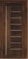 Дверь Terminus Modern 174 дуб браун, глухая