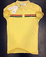 Желтая мужская футболка поло Lacoste