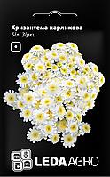 ТМ LEDAAGRO Хризантема карликовая Белые звезды 0,2г