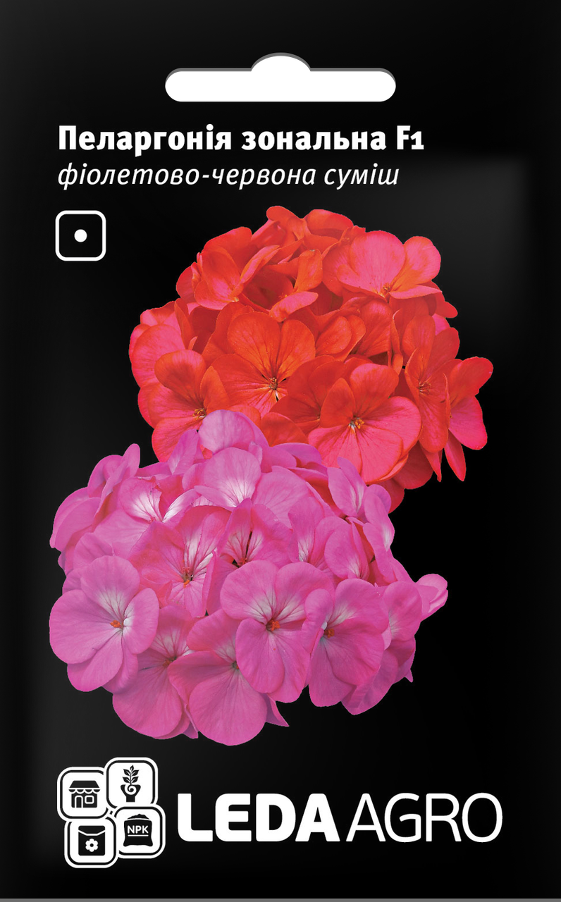 ТМ LEDAAGRO Пеларгония Зональная F1 фиолетово-красная 5шт