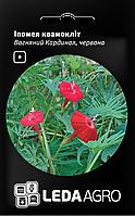 ТМ LEDAAGRO Ипомея квамоклит Огнянный кардинал 0,5г