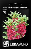 ТМ LEDAAGRO Бальзамин Цветучая Камелия 0,5г