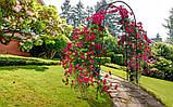 Металева садова арка 225см, фото 5