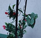 Металева садова арка 225см, фото 8