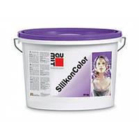 Baumit SilikonColor, силіконова фарба фасадна