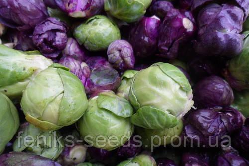 Семена Брюссельская Капуста микс