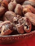 Какао боби Гана  сушені  1 кг, фото 3