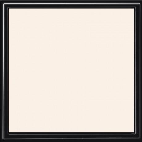 Пудра для лица Invisible - 10г Alkemilla