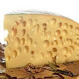 Закваска для сыра Эмменталь (на 6 литров молока), фото 2