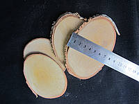 Срезы дерева, около 7х10 см (8/6) (цена за 1 шт. + 2 гр.)