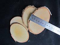 Срезы дерева, около 7х10 см (8/6) (цена за 1 шт. +2 грн.)