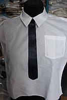 Манишка с галстуком для погребения