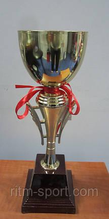 Кубок спортивный, фото 2