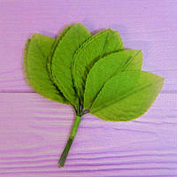 Набор зелёных листиков №1, 12шт.