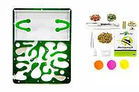 """Муравьиная Ферма Марко """"Зеленый лист"""" с гипсовой прослойкой ( комплект с кормом и муравьями) Стартовый набор!"""