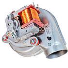 Вентилятор Ferroli DOMINA, Diva, Domicompact 28-30 FF - 39818021, фото 3