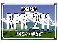 Американский номер Монтана (Изготовим за 1 час), фото 1