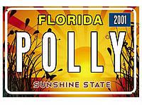Американский номер Флорида (Изготовим за 1 час), фото 1