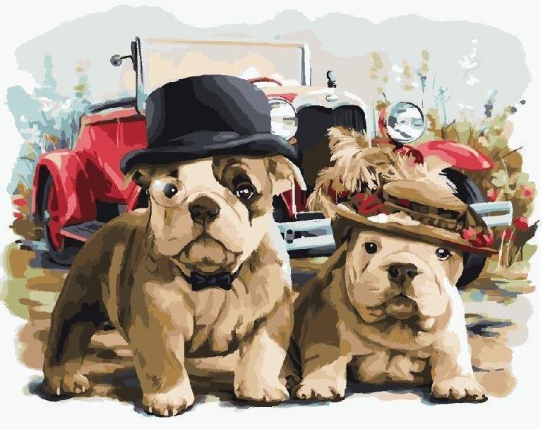 Узор, прикольные картинки и рисунки собак