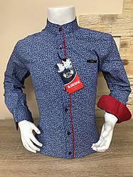 Дитяча сорочка Sinyor Besni 5-8 стійка з принтом