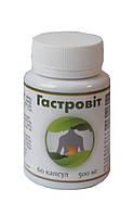 Гастровит БАД для предупреждения гастритов и язвенной болезни 60 капсул Витерра