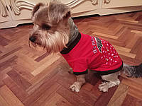 Футболка одежда для собак L