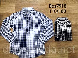 Рубашки для мальчиков Glo-Story 110-160 p.p.