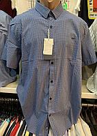 Качественные турецкие хлопковые мужские рубашки в клетку цвета синий - электрик