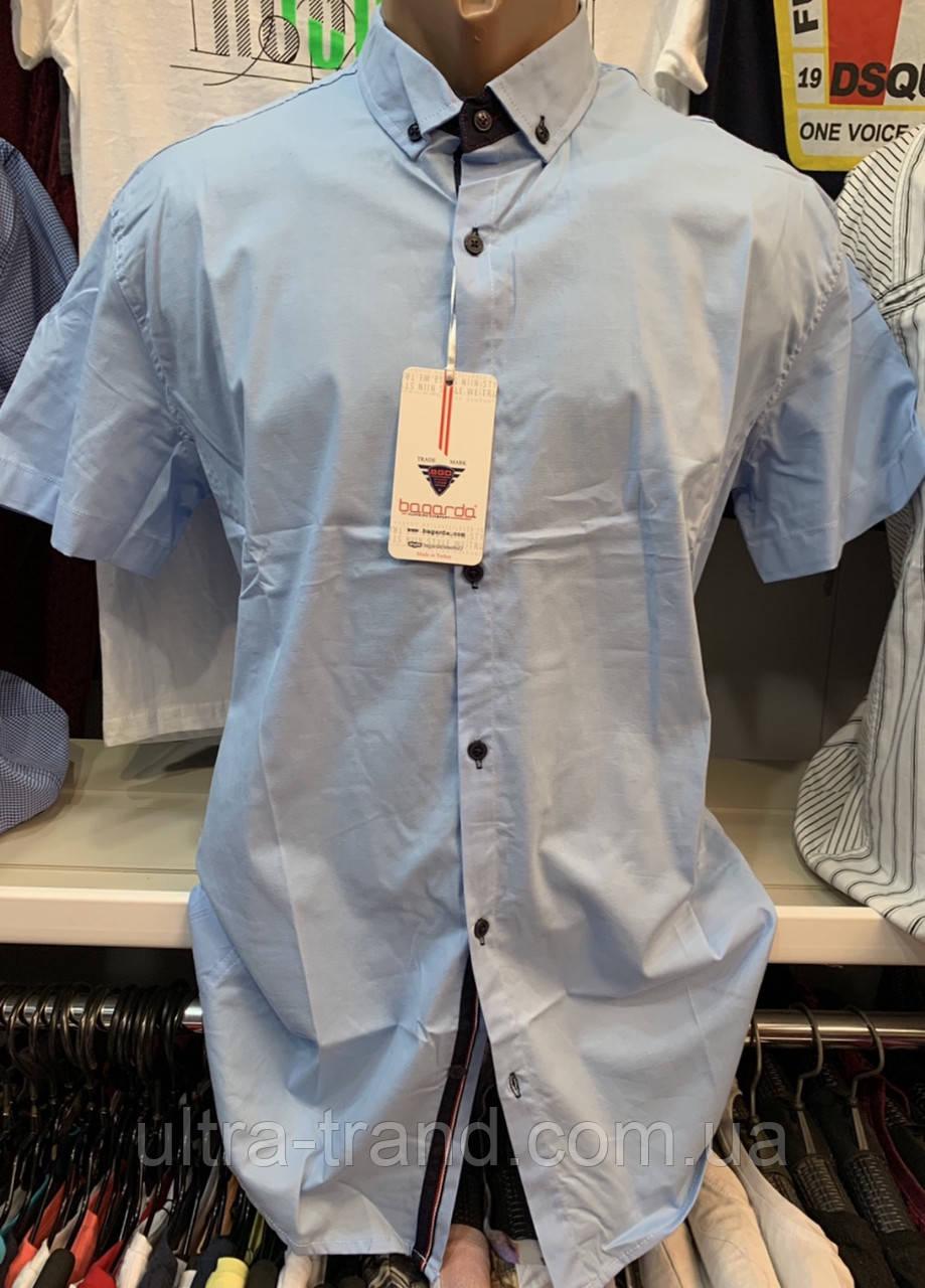 Мужские однотонные светло - голубые хлопковые рубашки