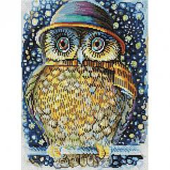 Алмазная вышивка мозаика Белоснежка Сова в шляпе 30 х 40 RN 161, КОД: 395358