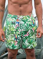 Шорты пляжные IslandHaze RainForest Day S Зеленый isl0006, КОД: 1024518