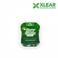 Xlear, Spry Germs, мятные (25 г), 40 шт.
