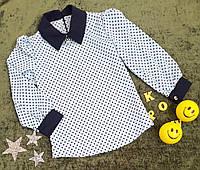 Детская блуза с длиным рукавом в горошек, р. 140-158, голубой, фото 1