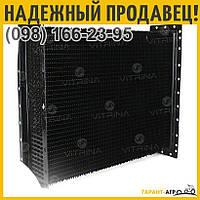 Сердцевина радиатора МТЗ-80 4-х рядн., латунь | 70У.1301.020 (Польша)