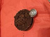 Какао порошок  темний deZaan D11RB, 10-12% алкалізований Нідерланди, 5 кг, фото 3