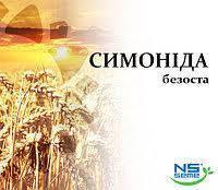 Семена озимой пшеницы Симонида безостая 1 репродукция