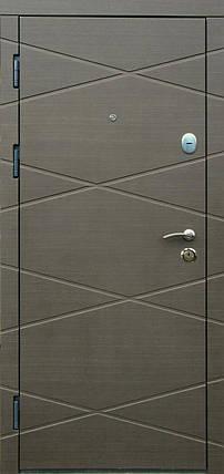 Наружные  входные двери Редфорт Графика винорит для улицы, фото 2