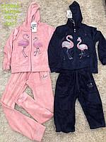 Велюровый костюм-двойка для девочек S&D оптом ,134-164 рр.