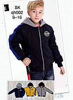 Куртка для мальчиков оптом, Setty Koop, 6-16 лет,  № QH002