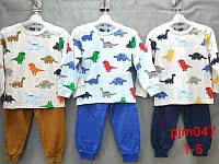 Пижама для мальчиков оптом, Setty Koop, 1-5 лет,  № PJM047