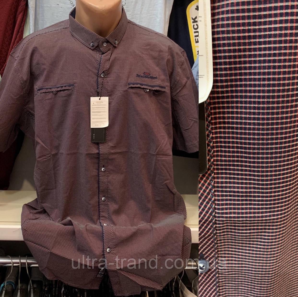Мужские качественные хлопковые турецкие рубашки сорочки с карманами больших размеров