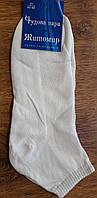 """Чоловічі хлопкові шкарпетки(сітка)""""Чудова пара"""" білі"""