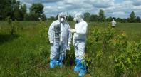 Научно-практический семинар-тренинг     «Методы проведения радиационного после аварийного мониторинга»