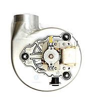 Вентилятор FERROLI DOMIproject 24D, Fereasy 24D, DOMItech 24D, DIVAtech 24D 39846780