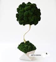 Декоративное дерево с настоящим мхом Fresh Dark, 30 cm, T24