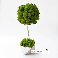 Декоративное дерево с настоящим мхом Fresh Tree, 30 cm