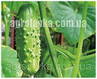 АКЦИЯ! Огурец партенокарпический Каролина F1 (45 дней) ранний гибрид, (1000 нас.) Lark Seeds