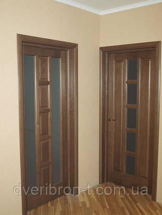 Двери Белоруссии Квадро ПО каштан, фото 2