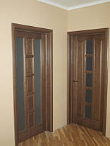 Двери Белоруссии Квадро ПОО каштан, фото 3