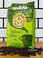 Кофе в зернах Lavazza Tierra Bio-organic, 1 кг (100% арабика), фото 1